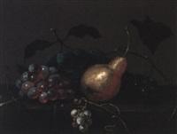 nature morte aux fruits by johannes bouman