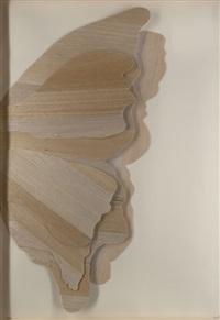 schmetterling/ farfalla by mario ceroli