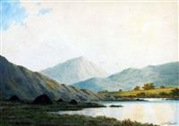 near glenbeigh, co kerry by douglas alexander