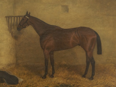 portrait of the race horse reflection in a stable by r.a. miley