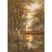 woodland pool, sunset by hugo anton fisher