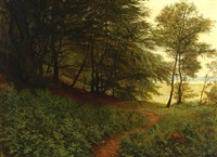 a small path in a forest by ludvig kabell