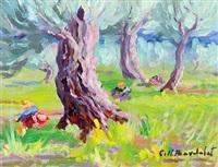 olivenbäume by josep coll bardolet