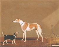 a greyhound and a beagle in a stable by edwin (of bath) loder