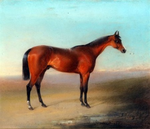thoroughbred racehorse by edward robert smythe