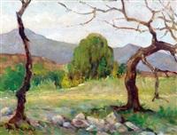 reflejo de sol - otoño ( rio ceballos ) by alfredo lazzari