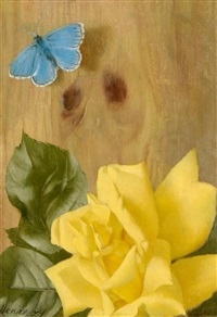 rose and butterfly by patrick hennessy
