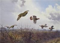 partridges; grouse by john cyril harrison