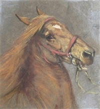 the circus pony by lucy elizabeth kemp-welch