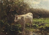 a cow near the waterfront by willem maris