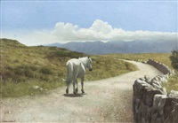 the long road home, connemara by patrick hennessy