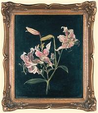 lilies by dorothea dornbusch-bastanier