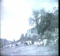 paysage avec berger et son troupeau by antoine eugène ernest buttura