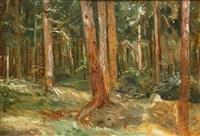 las by wincenty wodzinowski