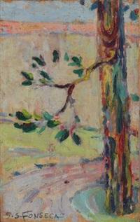 branche d'arbre by gaston de fonseca