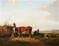 cattle resting in a wide landscape by jan bedijs tom