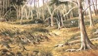 a kangaroo drive by edward roper