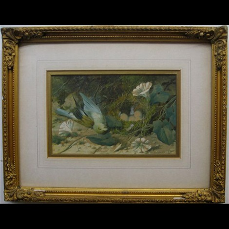 still life dead bird by nest study another pair by william m cruikshank