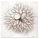 untitled (s.604, wall mounted on a base, tied wire, closed center, multi-branched form based on nature) by ruth asawa