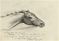 an album of drawings and watercolours by george algernon fothergill