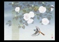 camellias by mutsuro kawashima