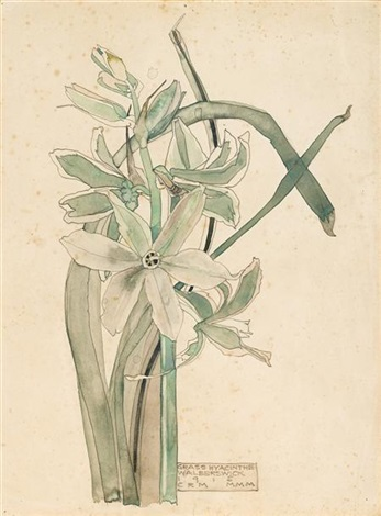 grass hyacinthe by charles rennie mackintosh