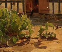 peberrodplanter foran en køkkendør by hans ludvig smidth
