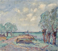 pollard willows in a field by louis saalborn