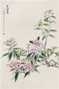 青城腊莲 by zhu peijun