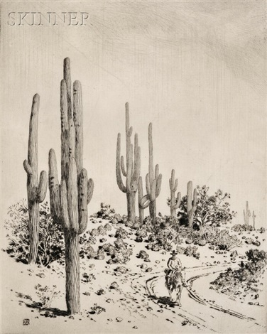 road to apache reservation arizona by george elbert burr