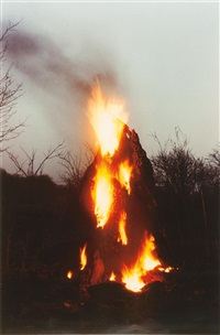 untitled (from silueta series, iowa) by ana mendieta