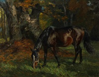 a grazing horse by richard benno adam