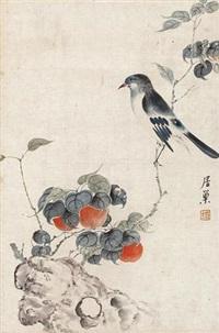 花鸟 by ju chao
