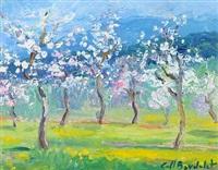 mandelblüte by josep coll bardolet