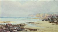 nsw beach scene with gulls by neville william cayley