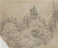 waldlandschaft in den bergen by johann wilhelm schirmer