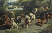 otterhounds on a scent by alfred duke