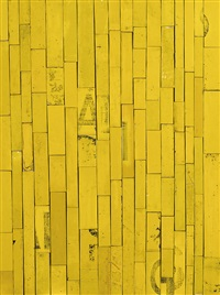 bush yellow by rosalie gascoigne