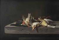 a gold finch, a common kingfisher and a hooded siskin, all on a stone ledge by jacobus vonck