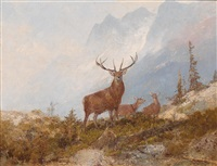 fine stag by georg fischhof