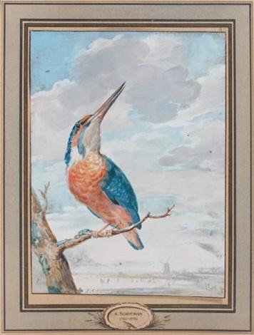 martin pêcheur by aert schouman