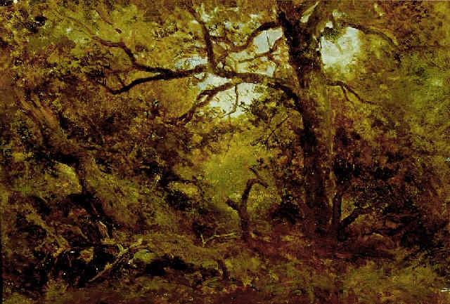 sous bois à barbizon by jean emile renié