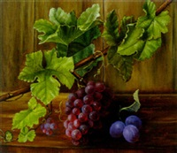 black grapes on a vine with plums on a wooden ledge by alfrida baadsgaard