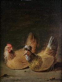 decorative fowl by dirck wyntrack
