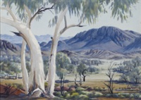 ghost gum, hermannsburg by albert namatjira