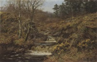 a waterfall by walter boodle