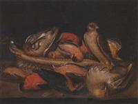 étude d'oiseaux morts avec un faucon by clara peeters