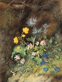 stilleben mit alpenblumen; edelweiß,trollblume, streifenfarn, latsche, alpen-mannestreu, almrausch,weißer alpenmohn und knotenfuß by theodor petter