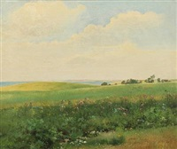 summer landscape with rolling fields by carl frederik peder aagaard