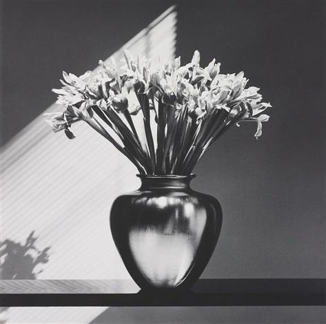 irises by robert mapplethorpe